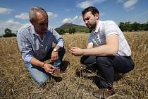Na pozvání předsedy Zemědělského družstva Klapý Otakara Šaška přijel i prezident agrární komory Jan Doležal, se kterým problém řeší.
