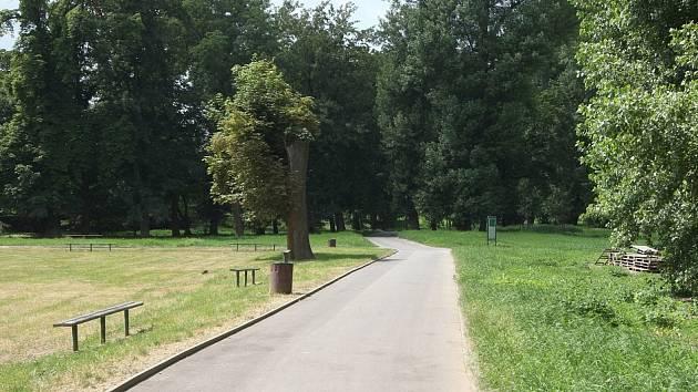 Lesopark Osmička v Lovosicích. Archivní foto
