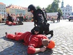 Den policie a IZS