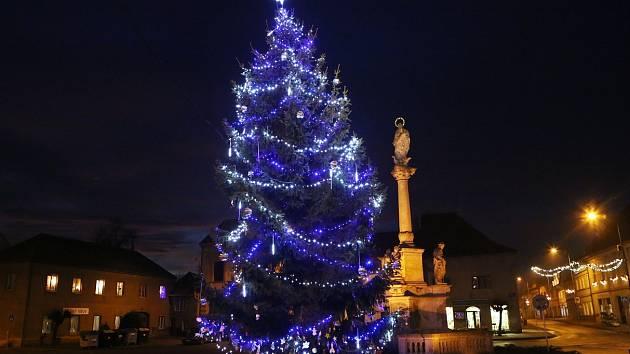 Vánoční strom v Libochovicích