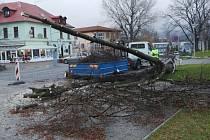 Pád stromu na Zeleném náměstí v Lovosicích.