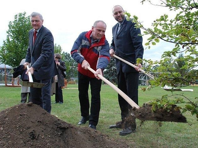 Starostové Fuldy, Litoměřic a Míšně zasadili na Střeleckém ostrově stromy přátelství.