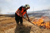 Požár pole u Litoměřic ve směru na Trnovany