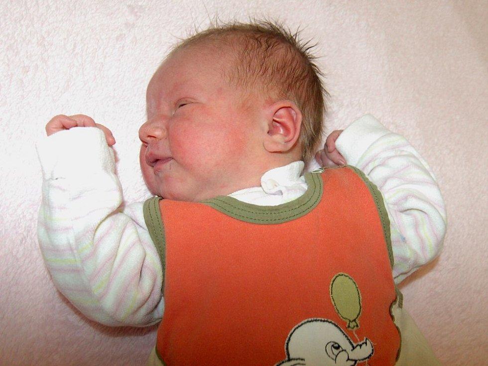 Kateřině Jirouškové a Davidu Modrovičovi z Bohušovic nad Ohří se 19.1. v 11.40 hodin narodila v Litoměřicích dcera Tea Modrovičová (3,7 kg a 52 cm).