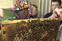 KONTROLA, LÉČENÍ. Včelaři na Litoměřicku se v současné době pouštějí do léčení včelstev. V boji proti včelímu moru se jim zatím daří. Na snímku jsou děti z třebenického včelařského kroužku.