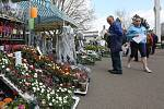 Výstavy Tržnice a Bydlení na Zahradě Čech