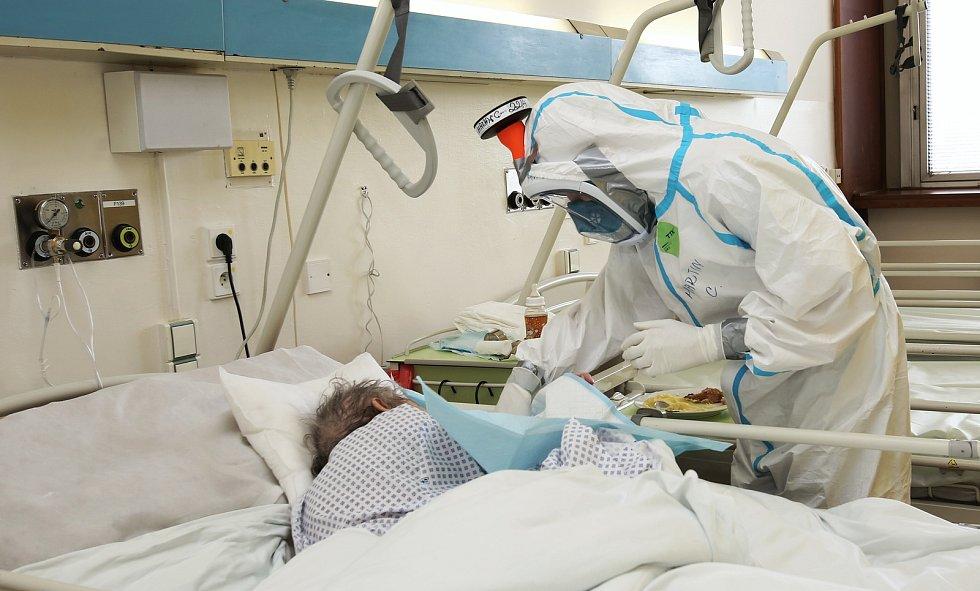 Covidová jednotka v nemocnici v Litoměřicích