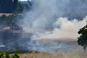 Požár pole u trati mezi Lovosicemi a Ústím