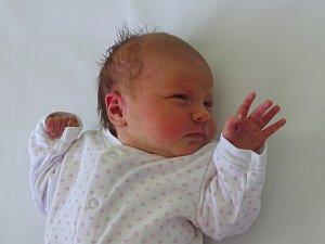 Sofia Žáková se narodila Olze Laubové a Martinu Žákovi z Křešic  16.4. v 21.33 hodin v Litoměřicích (3,28 kg a 51 cm).