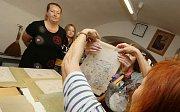 Workshopy podpořily Litoměřice, tentokrát v rámci oslav 800 let města.