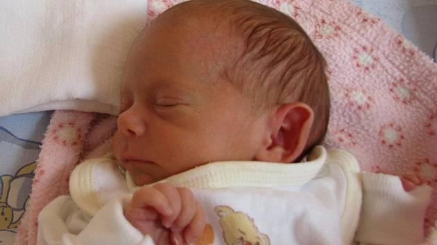 Martinovi a Lence Pavelkovým z Litoměřic se 3. září v 8.27 hodin v litoměřické porodnici narodila dcera Natálie Pavelková. Měřila 42 cm a vážila 1,85 kg. Blahopřejeme!