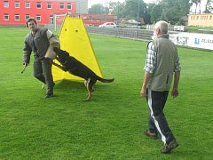 Kynologové mají sraz v Roudnici. Utká se 54 nejlepších psů v ČR