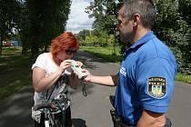Na hlídkující městské strážníky mohou narazit cyklisté na cyklostezce mezi Lovosicemi a Malými Žernoseky.
