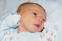 Olze a Ondřejovi Žaludovým z Malešova se 2.12. ve 20.37 hodin  narodil v Litoměřicích syn Ondřej Žalud (48 cm, 3,25 kg).