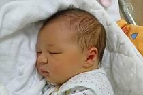 Anežka Šusteková se narodila Veronice Vozábové a Janu Šustekovi z Litoměřic 8.11. v 11:48 hodin v Litoměřicích (54 cm a 4,05 kg).