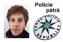 Policie pátrá po pohřešované Ireně Torákové