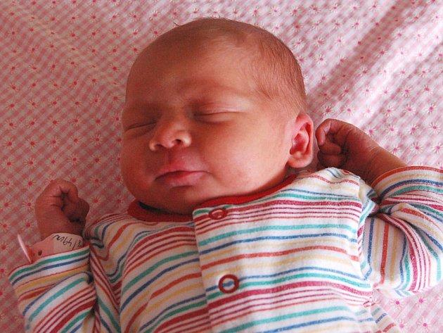 Zuzaně a Tomášovi Stehlíkovým z Řepnice se 22.6. v 12.06 hodin  narodila v Litoměřicích dcera Adriana Stehlíková (49 cm, 3,14 kg).