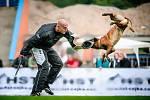 Roudnici nad Labem rozštěkalo 127 psích šampionů