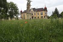 ROZKVETLÉ VLČÍ MÁKY, CHRPY a další byliny, letničky a traviny od letošního roku obklopují sochu rudoarmějce na okraji parku Jiráskovy sady v Litoměřicích.