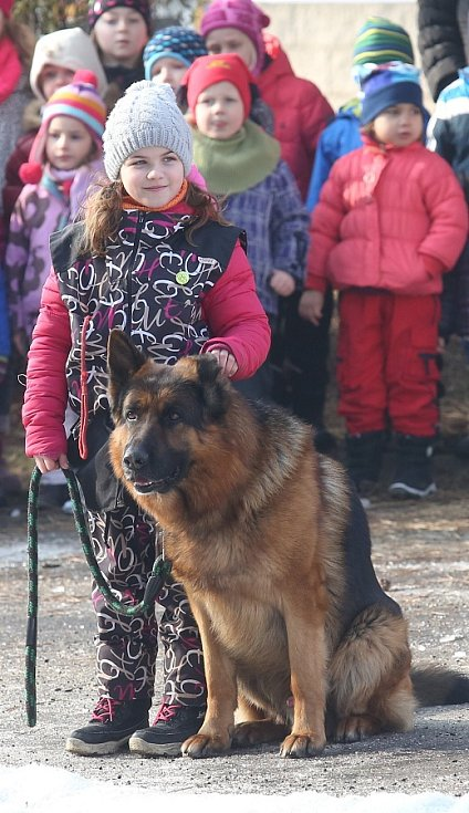 Výstava na Zahradě Čech hostí stovky zvířat