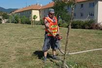 Dobrovolný hasič z Třebenic při kropení nové výsadby v Lovosicích.