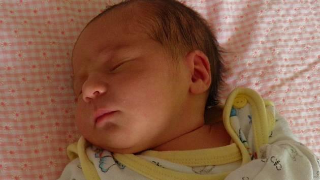 Michaele Kreutzerové a Vlastimilovi Ježkovi z Litoměřic se 18.8. v 19.16 hodin narodila v Litoměřicích dcera Michaela Ježková (49 cm, 3,13 kg).