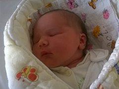 Šárce Petrželkové a Jaroslavovi Nebeskému se 28.1. v 1.36 hodin  narodila v Litoměřicích dcera Valerie Nebeská (53 cm, 4,4 kg).