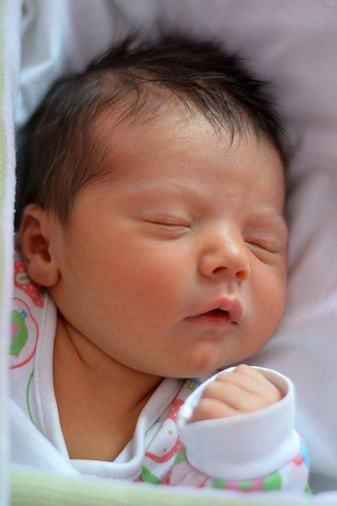 Kristýně Soukupové ze Židovic se 8.12. v 9:05 hodin narodil v Roudnici n.L. syn Marek Soukup (3,36 kg a 52 cm).