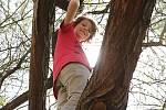 Očistný festival představil divadlo na stromě
