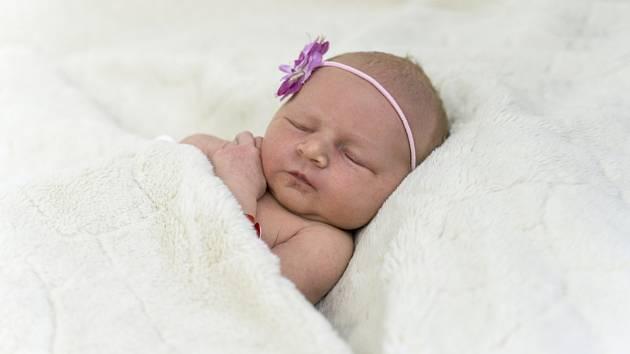 Natálie Procházková se narodila Martině a Liboru Procházkovým z Mšeného – lázní 1. října v 10.23 hodin v Roudnici n. L. (51 cm a 3,42 kg)