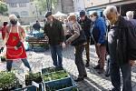 V Litoměřicích se obyvatelům otevřely brány městské tržnici a začaly farmářské trhy.