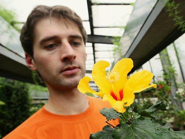 Ve sklenících Státního zámku v Libochovicích je jaro. Rozkvétá zde spousta nádherných květin, mezi nimi také desítky druhů orchidejí,