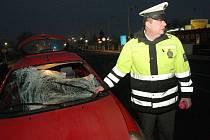 Smrtelná dopravní nehoda u Litoměřic, 1.1.2014