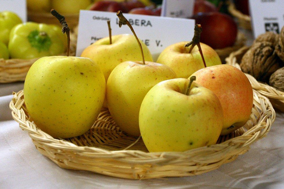 Ilustrační foto - ovoce