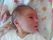 Amálie Lachmanová se narodila Monice a Lukáši Lachmanovým z Mlékojed  17.7. v 1.57 hodin v Litoměřicích (3,14 kg a 50 cm).