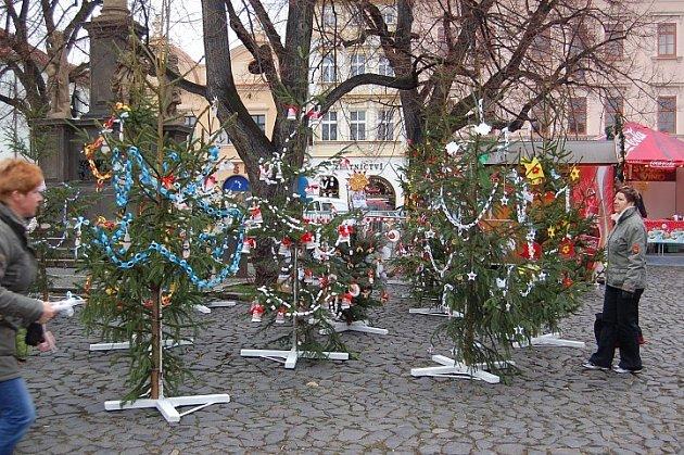 Vánoční stromečky nazdobené dětmi z litoměřických mateřských škol.