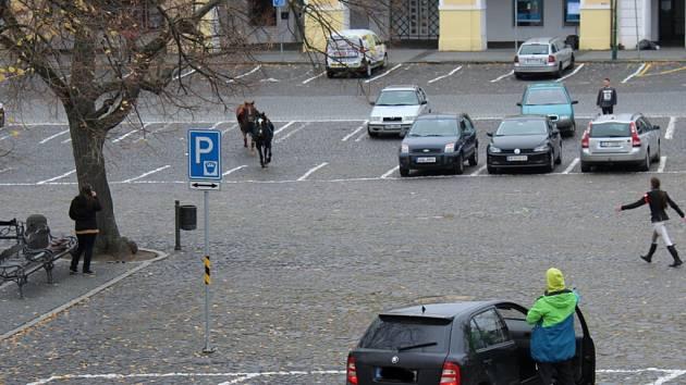 Splašení koně v Litoměřicích.