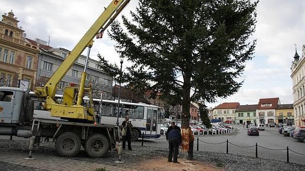 Instalace vánočního stromu v Roudnici.