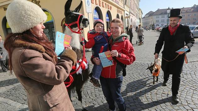 Herci spolu s členy a zvířaty ze spřáteleného sdružení Oper na událost zvali přímo v ulicích města.