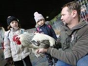 Výstava Děti a zvířata na litoměřické Zahradě Čech