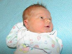 Janě Šestákové z Žalhostic se 27.7. v 0.40 hodin narodil v Litoměřicích syn Tomáš Šesták (3,5 kg, 50 cm).