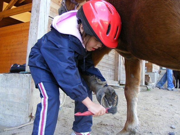 AGROTURISTIKU zaměřenou na volnočasové aktivity s koňmi nabízí na Litoměřicku ranč v Třebušíně. Věnuje se trénování zkušených jezdců i rekreačnímu ježdění či vyjížďkám.