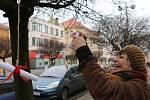 Spolek LiPen sdružuje seniory. Tentokrát je zasvětil do street artu.