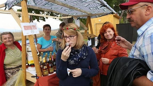 Medovinobraní ve Vrbičanech. Snímek z roku 2015