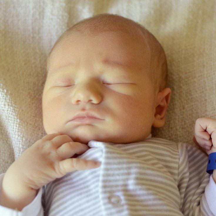 Dalibor Hanka se narodil Martině a Janovi Hankovým z Kralup nad Vltavou 6.5. v 8:37 hodin v Roudnici n.L. Měřil 50 cm a vážil 3,46 kg.