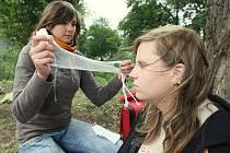 Mladí zdravotníci se předvedli v Litoměřicích.