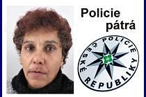 Policie pátrá po Ireně Tokárové