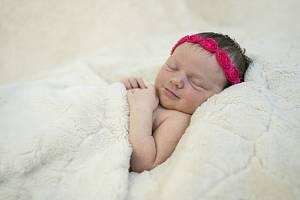 Barbora Kutzlerová se narodila Michaele a Marku Kutzlerovým z Keblic 3. listopadu v 2.58 hodin v Roudnici n. L. (51 cm a 3,64 kg).