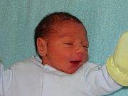 David Jan Kaločai se narodil Zuzaně Kucharové  a Davidu Kaločaiovi z Litoměřic 20.11. ve 3 hodiny  v Litoměřicích.  Měřil 45 cm a vážil 2,62 kg.