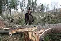 """""""Zaplaťpánbůh, že už nerostou houby. To by bylo lidem úplně jedno, že na ně může spadnout strom,"""" poznamenal při obhlídce revíru Lipská hora revírník Ladislav Jandečka. Zákaz vstupu do lesů může na některých místech trvat až do konce příštího roku."""